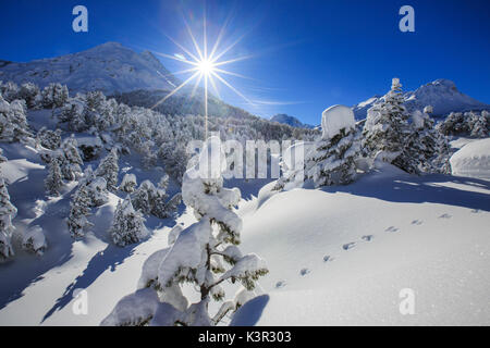 Rays of winter sun illuminate the snowy landscape around Maloja Canton of Graubünden Engadine Switzerland Europe - Stock Photo