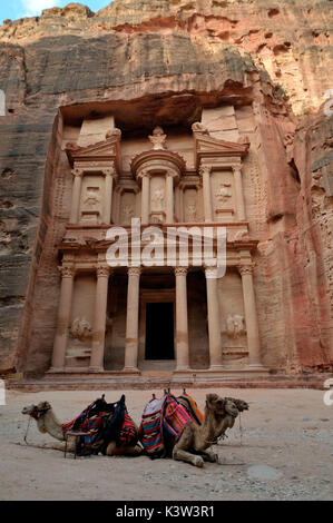 The allure of the treasure of Petra, at sunrise, in the company of only a few camels at rest waiting for the tourists. - Stock Photo