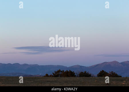 Some plants and bushes on a meadow at dusk, with beautiful purple and orange colors in the sky and distant mountains - Stock Photo
