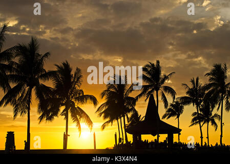 Silhouettes of palm tree during sunset in Kota Kinabalu, Sabah Borneo, Malaysia. - Stock Photo