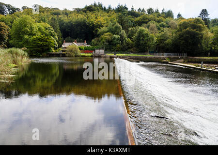 Spillway and nature reserve lake behind the dam at Lopwell dam on  the River Tavy,Devon, UK - Stock Photo