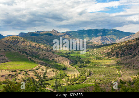 Landscape mountain valley with vineyards at the foot of the valley on a background cloudy sky - Stock Photo