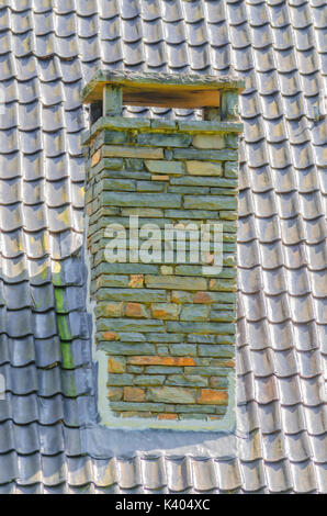 Chimney made of bricks on an old dirty roof. A tree grows from the fireplace. - Stock Photo