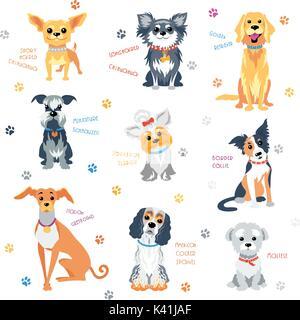 Set colour dogs - Stock Photo
