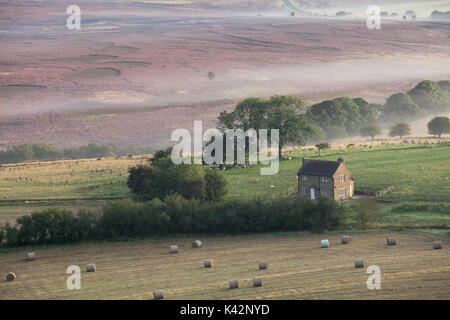 A remote farm near Saltergate in the North York Moors National Park - Stock Photo