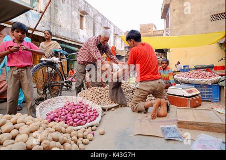 Market stall with Potatoes and Onions, Bharatpur, Rajasthan, India | Marktstand mit Kartoffeln und Zwiebeln, Bharatpur, - Stock Photo