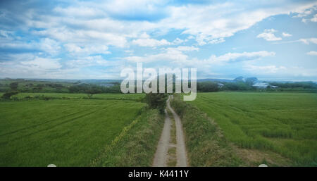 High angle view of dirt road amidst grassy landscape against cloudy sky - Stock Photo