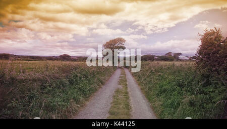 Road amidst grassy landscape against cloudy sky - Stock Photo