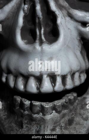 Close-up horizontal photo of the human skull - Stock Photo