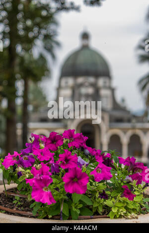 Flowers with temple of beatitudes - Stock Photo