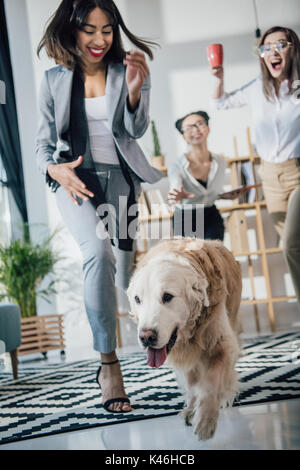 Cheerful young businesswomen playing with golden retriever dog in modern office - Stock Photo
