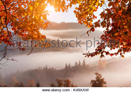 Foggy dawn in the autumn in the mountains - Stock Photo