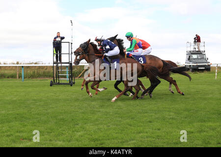 Horse Racing. And They're Off - Brighton races  Route Mobile Handicap 10/8/17 - Stock Photo