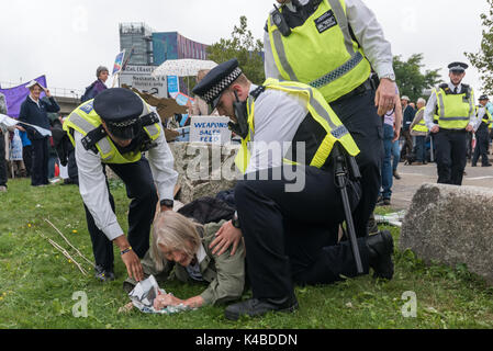 London, UK. 5th Sep, 2017. Police gently lower a Quaker protester they have carried off the road onto the grass - Stock Photo