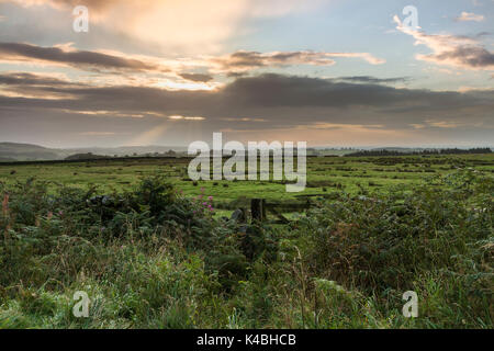 Marwood, Teesdale, County Durham, UK. 6th Sept 2017. UK Weather. Early morning rain gave way to sunny spells as - Stock Photo