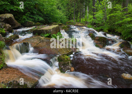 Untere Bodewasserfall / Waterfall Untere Bodefall / Lower Bodefall on the river Warme Bode near Braunlage, Harz - Stock Photo