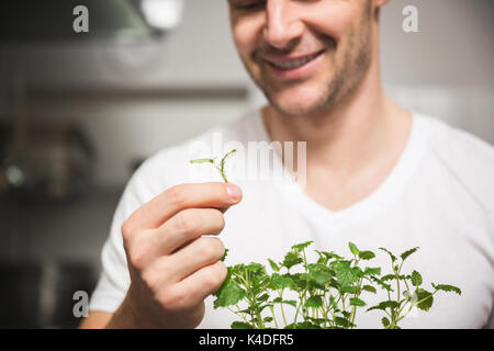Cropped portrait of happy chef holding piece of lemon balm - Stock Photo