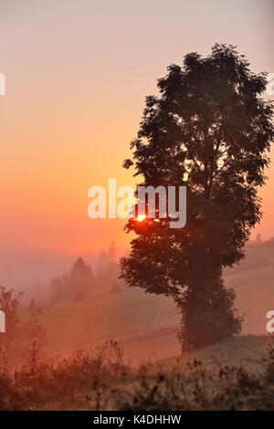 Carpathians Foggy Morning In Autumn Mountains Valley Stock Photo - This man hikes up the transylvanian mountains every morning to photograph sunrise