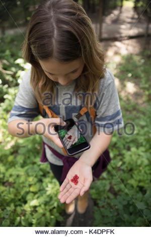 Teenage girl with camera phone hiking and photographing red berries in woods - Stock Photo