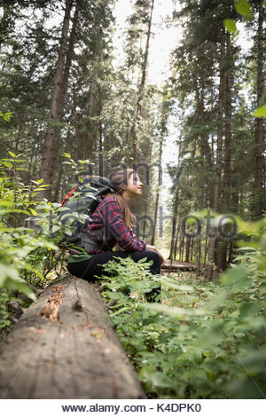 Curious teenage girl with backpack hiking, resting on log and looking up in woods - Stock Photo