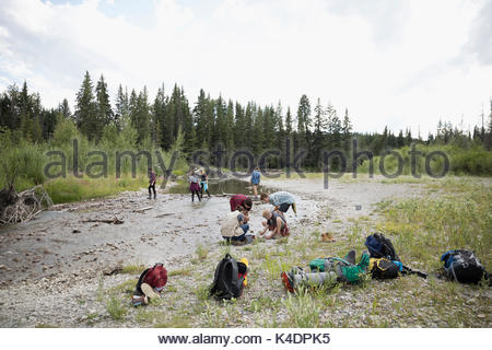Teenage outdoor school students collecting samples at stream in woods - Stock Photo