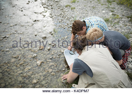 Male teacher and teenage boy outdoor school students collecting samples in stream - Stock Photo