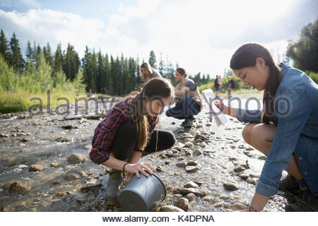 Teenage outdoor school students exploring, collecting samples and taking notes at stream - Stock Photo