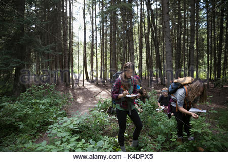 Teenage outdoor school girl students exploring undergrowth in woods taking notes in notebooks - Stock Photo