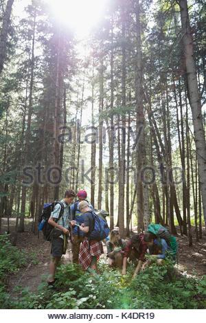 Teenage outdoor school students exploring undergrowth in woods - Stock Photo