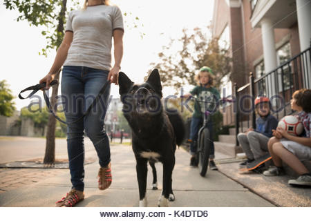 Woman walking dog on leash past boys on sidewalk - Stock Photo