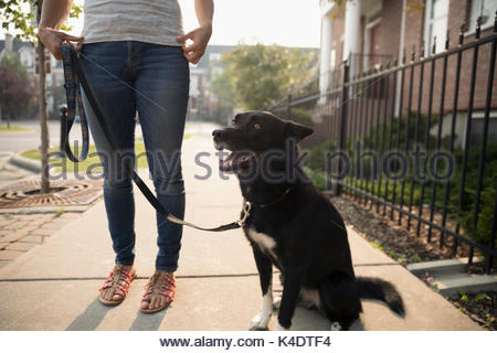 Woman standing with dog on leash on sidewalk - Stock Photo