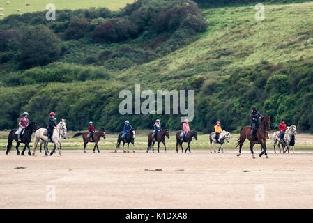 Gannel Estuary - pony trekking along the exposed river bed at low tide on the Gannel River in Newquay, Cornwall. - Stock Photo