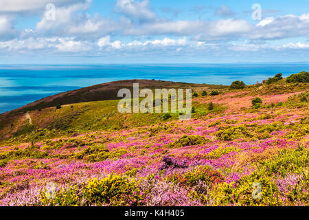 The view from Bossington Hill in the Exmoor National Park,Somerset. - Stock Photo