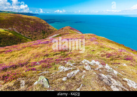 The view over the Bristol Channel from the Southwest Coast Path in the Exmoor National Park,Somerset. - Stock Photo