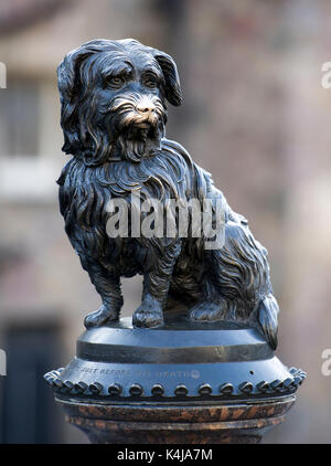 Greyfriars Bobby's monument is on the corner of Candlemakers Row and King George IV Bridge Edinburgh Scotland UK. - Stock Photo