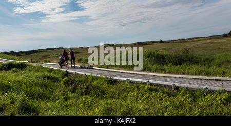 Family walking on boardwalk in landscape, Inverness, Mabou, Cape Breton Island, Nova Scotia, Canada - Stock Photo