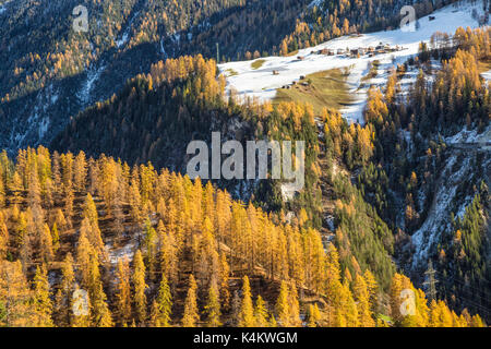 Colorful woods surrounded the small village of Jenisberg Davos District Canton of  Graubünden Switzerland Europe - Stock Photo