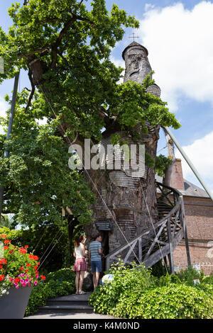 France, Seine-Maritime (76), Allouville-Bellefosse, le chêne d'Allouville // France, Seine-Maritime, Allouville - Stock Photo