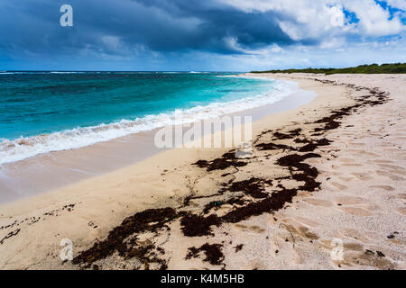 Dark clouds of an approaching storm over breaking waves on the deserted seashore of Pink Sand Beach in Barbuda, - Stock Photo