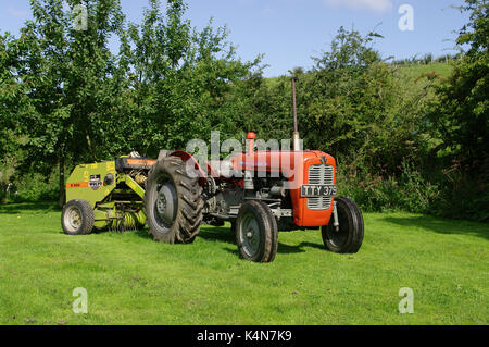 Massey Ferguson 35 tractor - Stock Photo