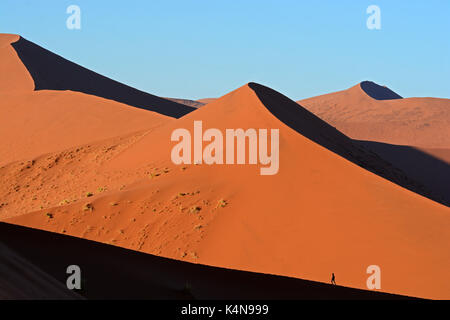 A lone person walks across the enormous sand dunes of the Namib Naukluft National Park, near Sossusvlei, Namibia. - Stock Photo