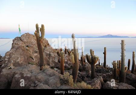Sunrise view of the Salar de Uyuni from the Isla del Pescado, a hilly and rocky outcrop of land in the middle of - Stock Photo
