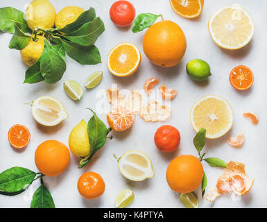 Variety of fresh citrus fruit for making healthy smoothie - Stock Photo