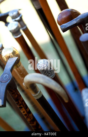 Various wooden canes in an antique shop - Stock Photo