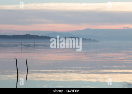 Lake at dusk, with mist and beautiful, soft and warm colors, and wooden poles in the foreground - Stock Photo