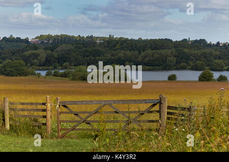 View of a farm gate leading into countryside. - Stock Photo