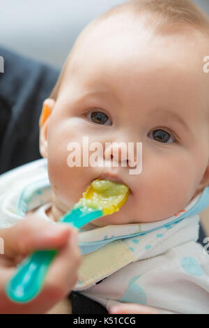 Mother feeding baby girl with mashed avocado and green vegetable, food on a plastic spoon; concept of family life, - Stock Photo