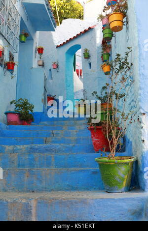 Flowerpots on the steps of a street in Chefchaouen, Morocco - Stock Photo