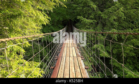 Walking across suspension bridge POV at Fall Creek Falls State Park in Tennessee - Stock Photo