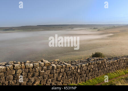 Hadrian's Wall, Northumberland, England - looking north-east as early morning mist hangs over low ground near Cawfield - Stock Photo